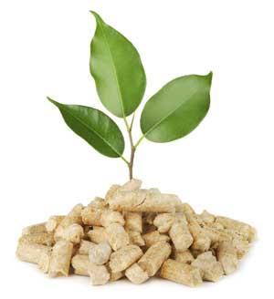Ahorro energía utilizando pellets en sus calderas